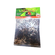 1,500 Ladybugs product photo
